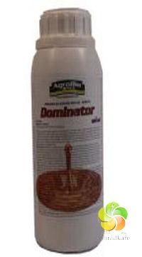 Dominator 500 ml herbicid