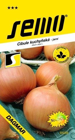 Fotografie Cibule kuchyňská DAGMAR (0528)