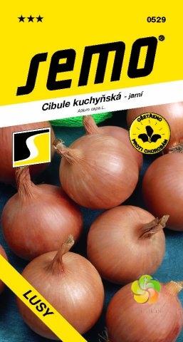 Fotografie Cibule kuchyňská LUSY (0529)