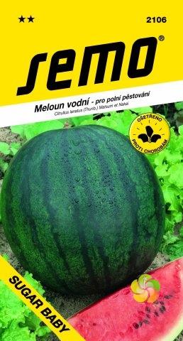 Meloun vodní SUGAR BABY (2106)