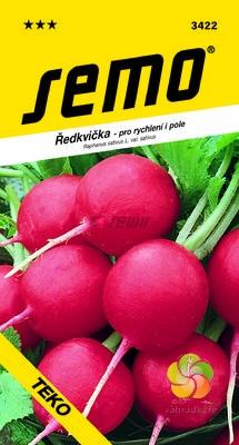 Ředkvička TEKO (3422)