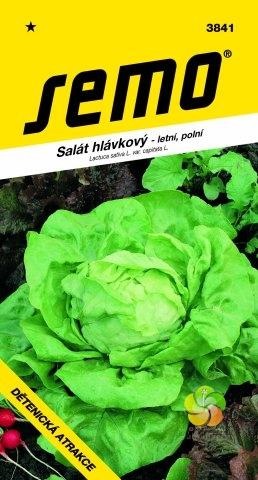 Salát hlávkový DĚTENICKÁ ATRAKCE (3841)