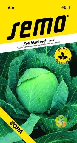 Zelí hlávkové ZORA (4211)