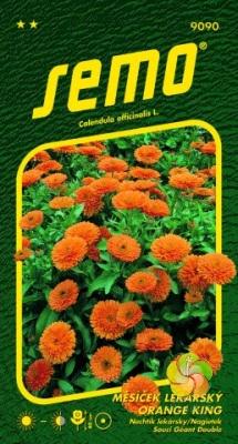 Měsíček lékařský - Oranžový (9090)