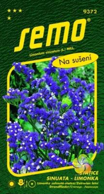 Fotografie Statice sinuata (Limonka) - Safír (Dark Blue) (9372)