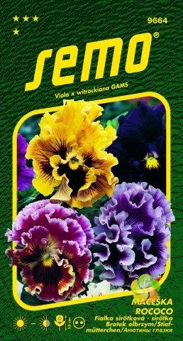 Maceška zahradní velkokvětá - ROCOCO Směs (9664)