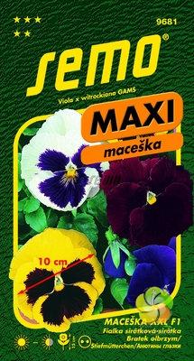 Maceška zahradní velkokvětá - XXL F1 (9681)