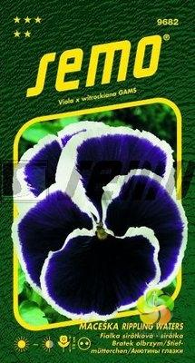 Maceška zahradní velkokvětá - RIPPLING WATERS (9682)