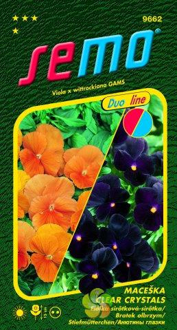 Maceška zahradní velkokvětá - CLEAR CRYSTALS (9662)