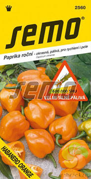 Paprika roční Habanero Orange - pálivá (2560)