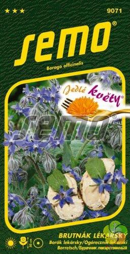 Brutnák lékařský - jedlé květy (9071)